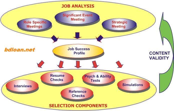 Human Resources Management Job Analysis BUSINESS INFORMATION - job analysis