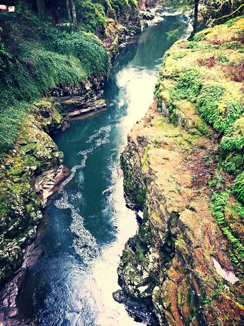 Lewis River North Of Battle Ground Wa 176 176 176 Hiking Pnw