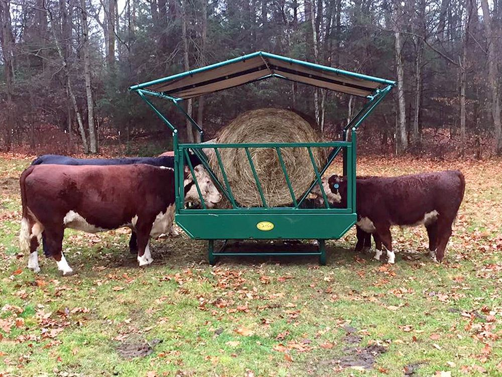 hay equipment cattle adult livestock paton square bale product feeder industries