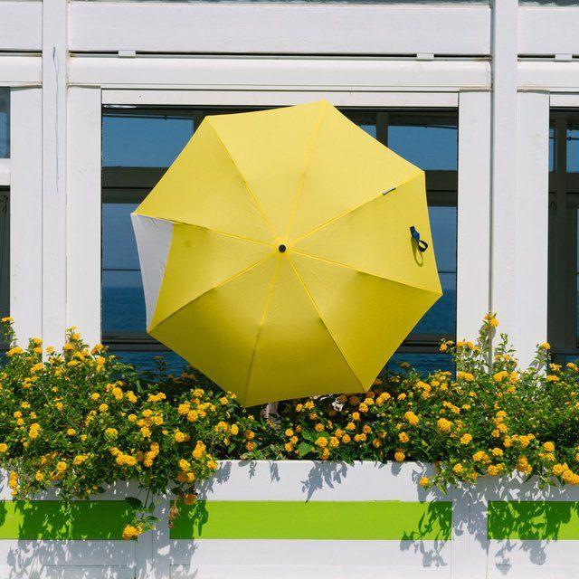 Certain Standard San Telmo Small Umbrella #smallumbrella