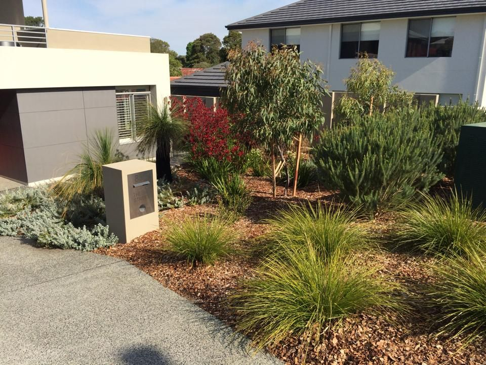 Native australian plants native garden perth wa for Front yard garden designs australia