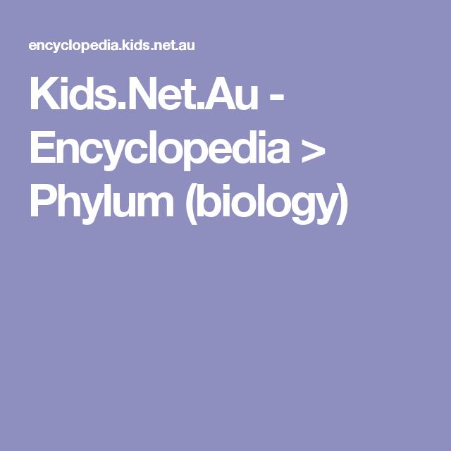 Phylum Biology