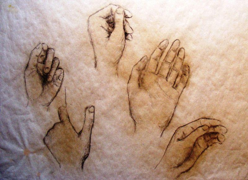 Charcoal, hands, study, artist Kristýna Pavluvčíková.