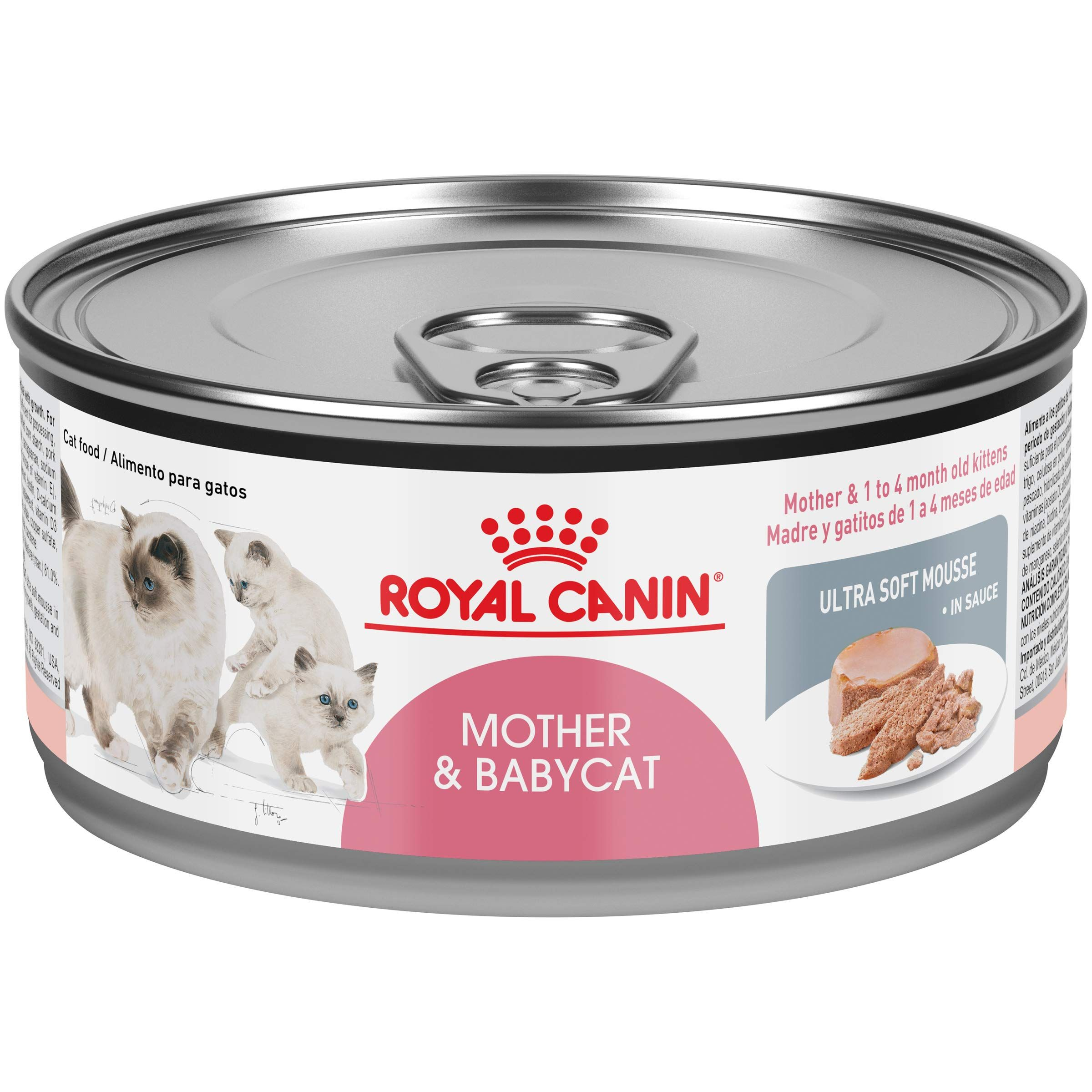 Royal Canin Feline Health Nutrition Mother And Babycat Canned Cat Food Continue To The Product At The Image Link Canned Cat Food Feline Health Wet Cat Food