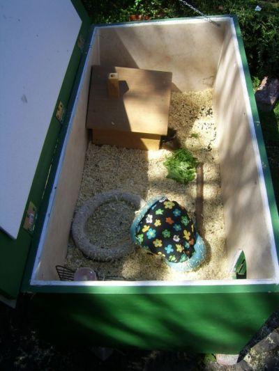 Schutzboxen Meerschweinchen Meerschweinchen Haus Meerschwein