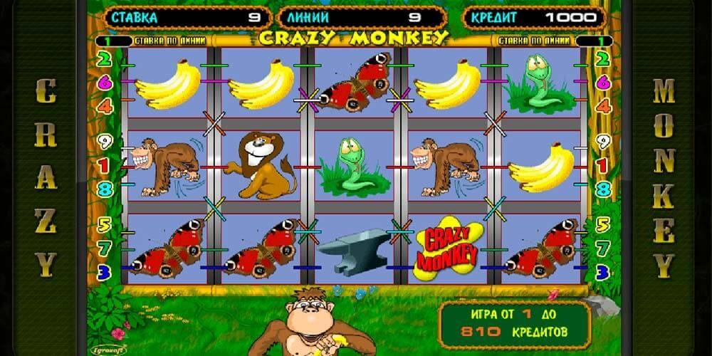 Играть i crazy monkey игровые автоматы играть игровые автомат последние новости