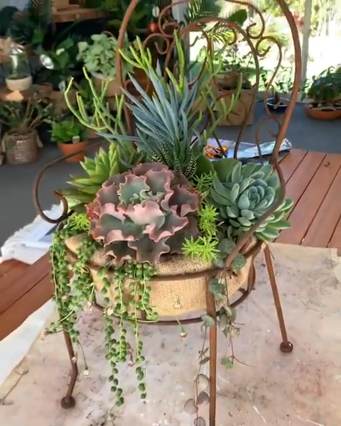 Photo of oooooh, this DIY chair planter is awesome for succulents!