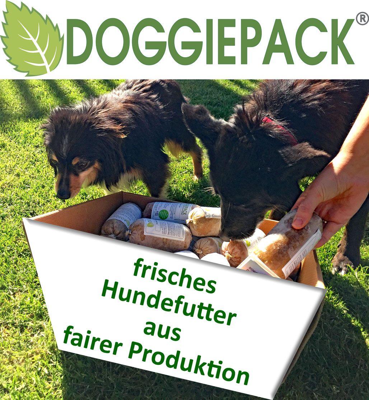 Uber Doggiepack Hunde Futter Hunde Ernahrung Hundefutter