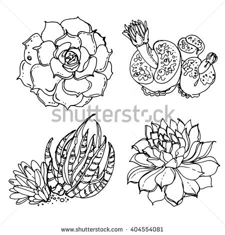 desert flower coloring pages - photo#12