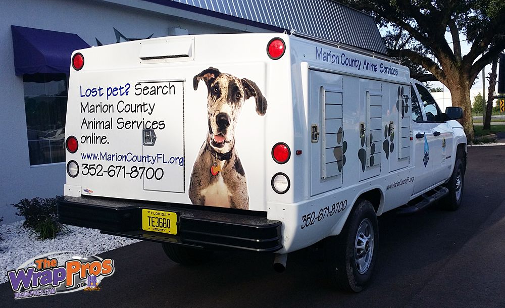 Marion County Animal Control Services 3M Certified