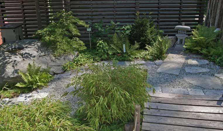 Für den Schattenplatz im Garten, unter hohen Gehölzen oder ...