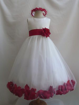 The Flower Girl dress I just ordered my niece for the wedding!!!