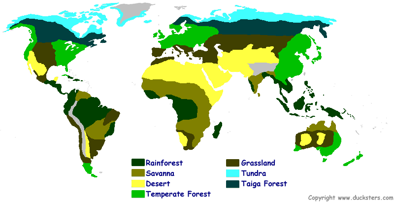 Map of the world biomes and explanation of each biome Learning