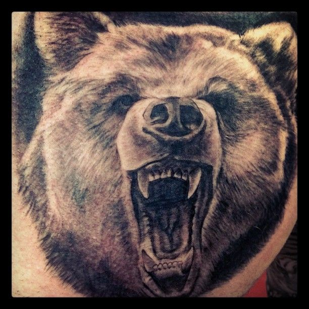 Angry Bear Tattoo Image | tatuaż | Pinterest | Bear ...