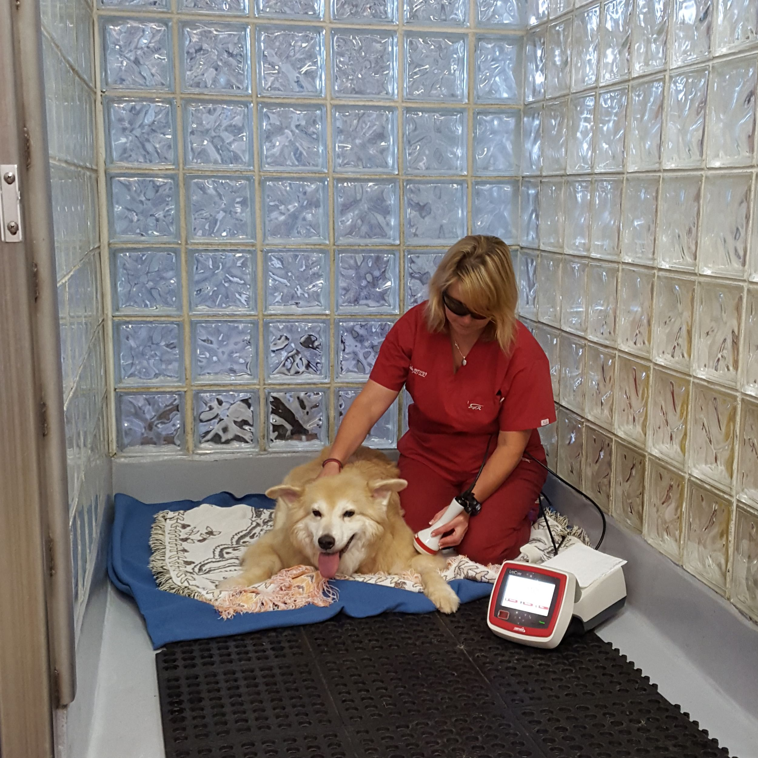 Kim Darling performing Laser Therapy on a patient