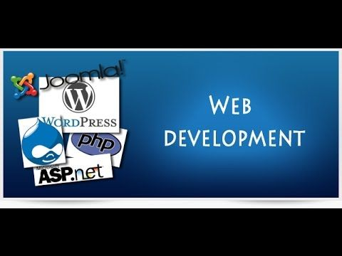 Extert It Bd Web Development Process Web Development Design Custom Website Design Development