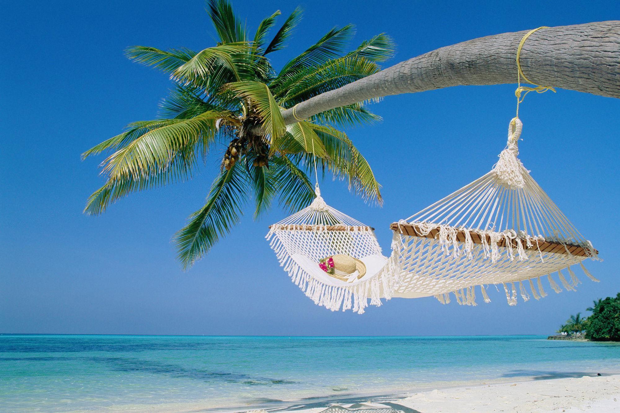 Tropical Beach Hammock Wallpaper Background 1 HD ...