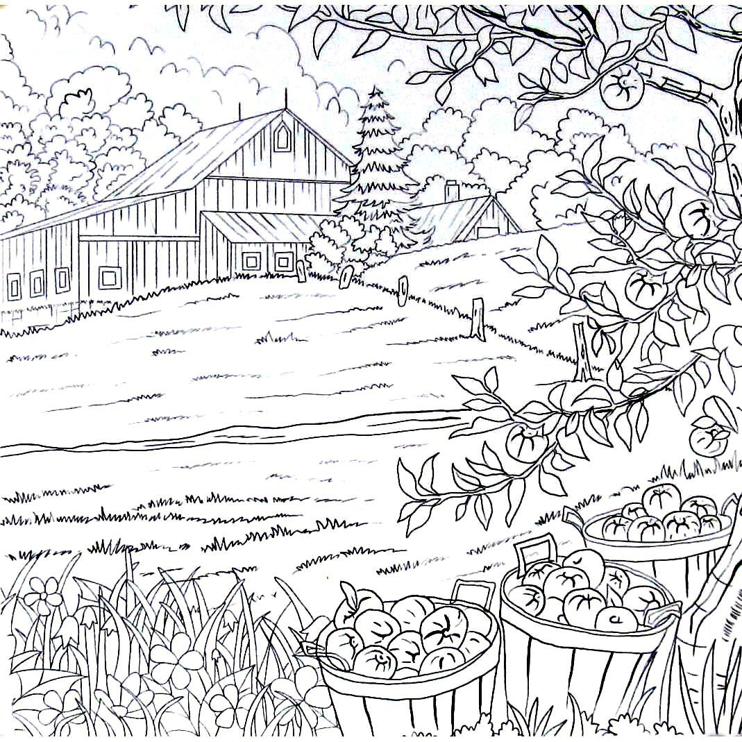 Apples In Bushels On The Farm Country Living Coloring Book Printable Page Apple Coloring Pages Coloring Pages Farm Coloring Pages