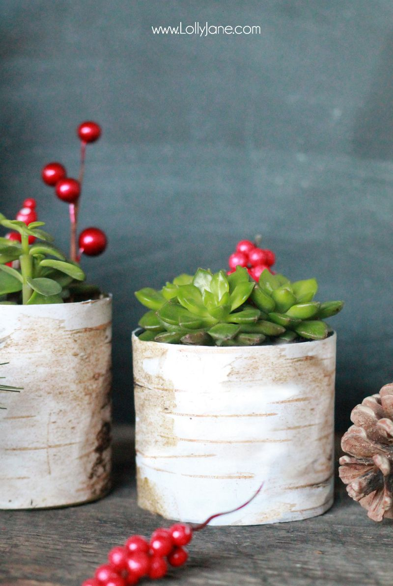 Scrapbook ideas recycled - Diy Faux Birch Wood Succulent Planter Made From Old Tin Cans And Scrapbook Paper Cute