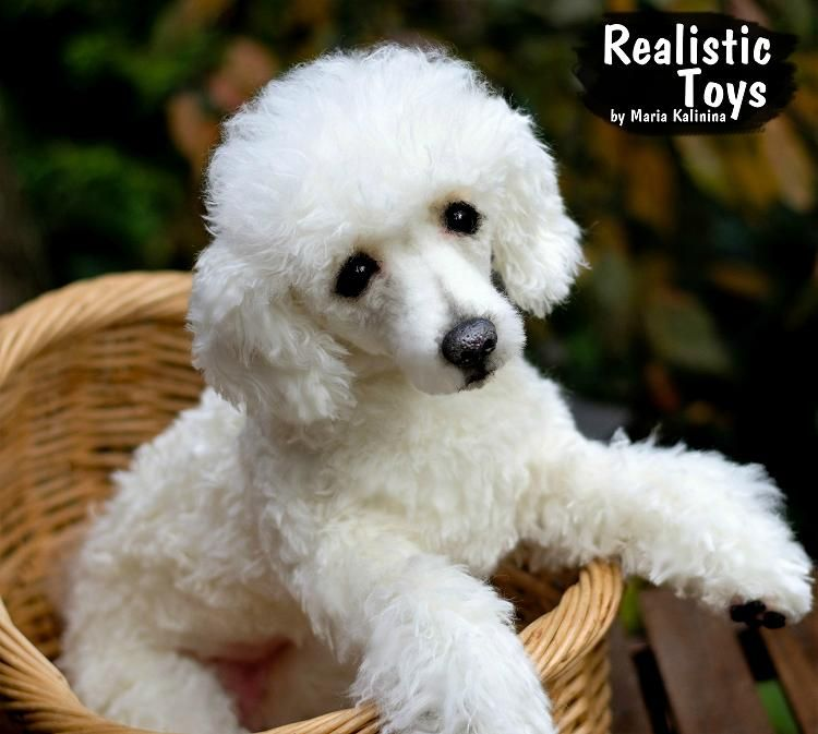 Tiffany Poodle By Realistic Toys By Maria Kalinina On In 2020