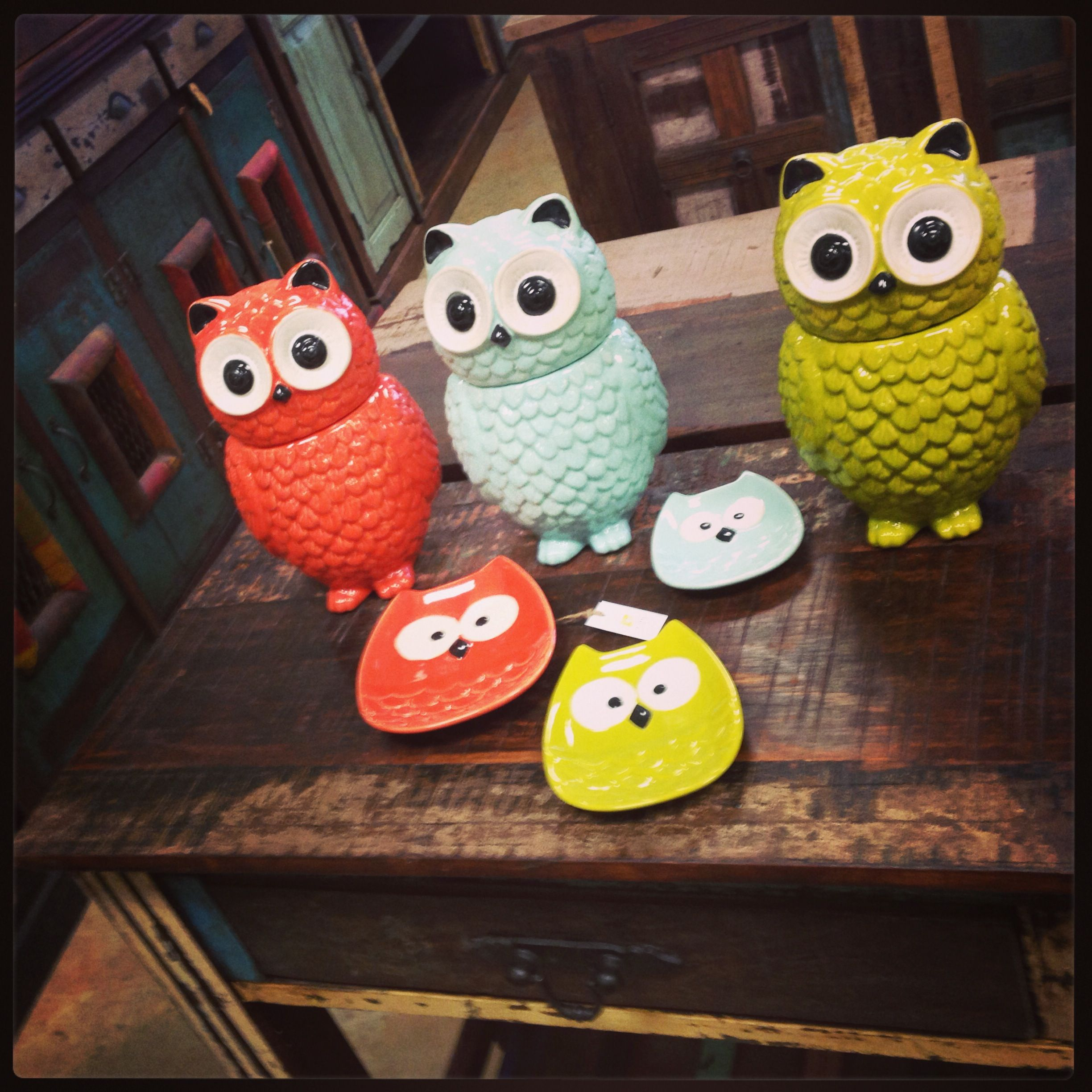 New Owl Canisters And Owl Plates In Stock So Cute Perfect For Spring Colorful Playful Adorable Fayetteville Ar Owl Kitchen Owl Plate Owl Theme