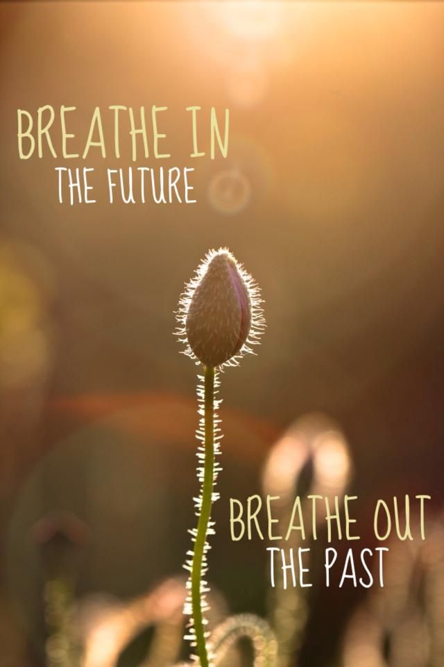 Breathe Life Life Quotes Inspirational Quotes