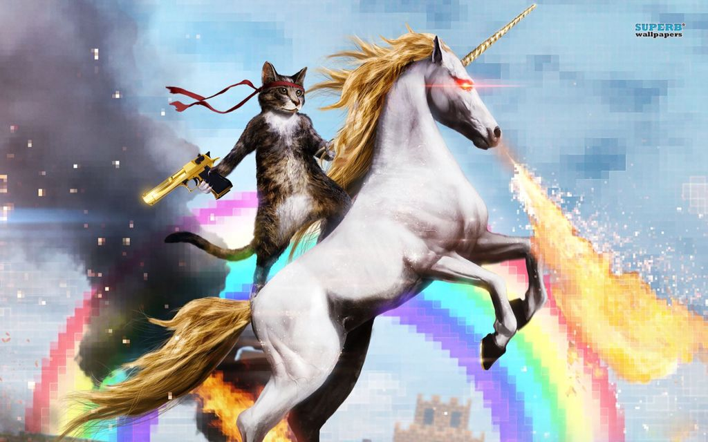 Unicorn and ninja cat | Cat riding unicorn, Funny cute cats ...