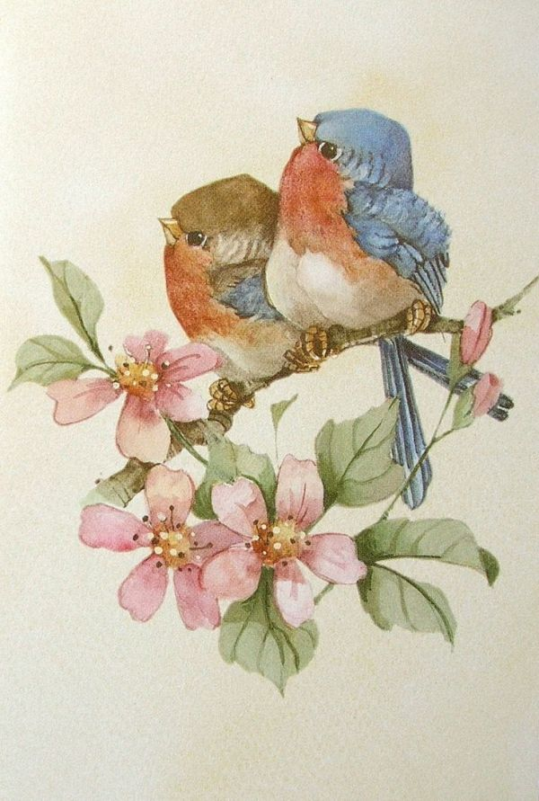 Рисунки птичек для открыток