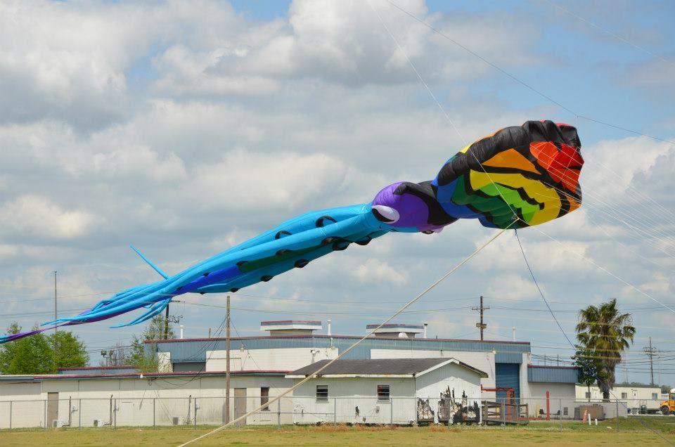 Awesome Kite! #louisiana #westbatonrouge #portallen #kitefest #kite
