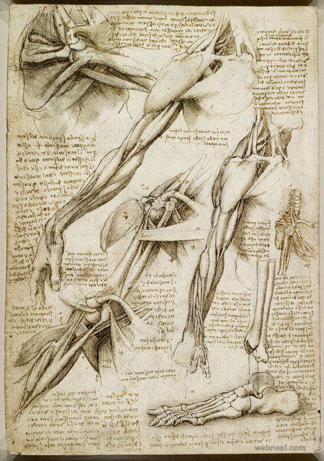 40 Most Famous Leonardo Da Vinci Paintings and Drawings | Pinterest ...