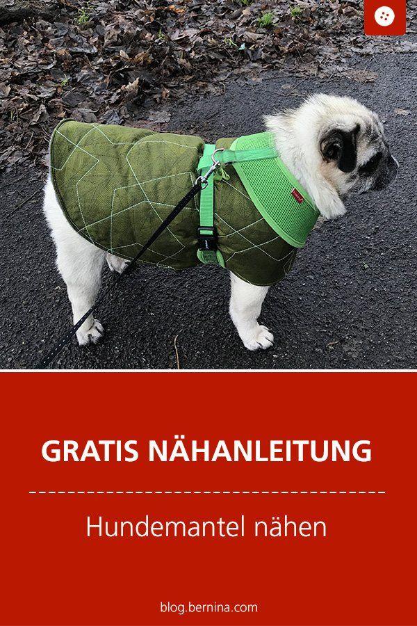Hundemantel nähen - Freebie-Anleitung und Schnittmuster-Konstruktion