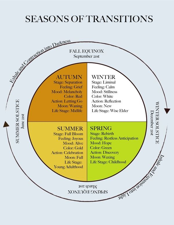 Diagram Of The Seasons Of Transitions By Sheryl Paul Her Blog