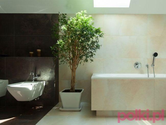 Czy W Lazience Mozna Hodowac Kwiaty Bathroom Bathtub Polki