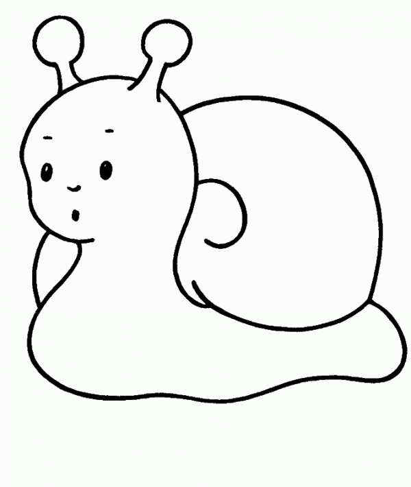 didbujofacil | Animales Bosque. Colorear Infantil | Pinterest ...
