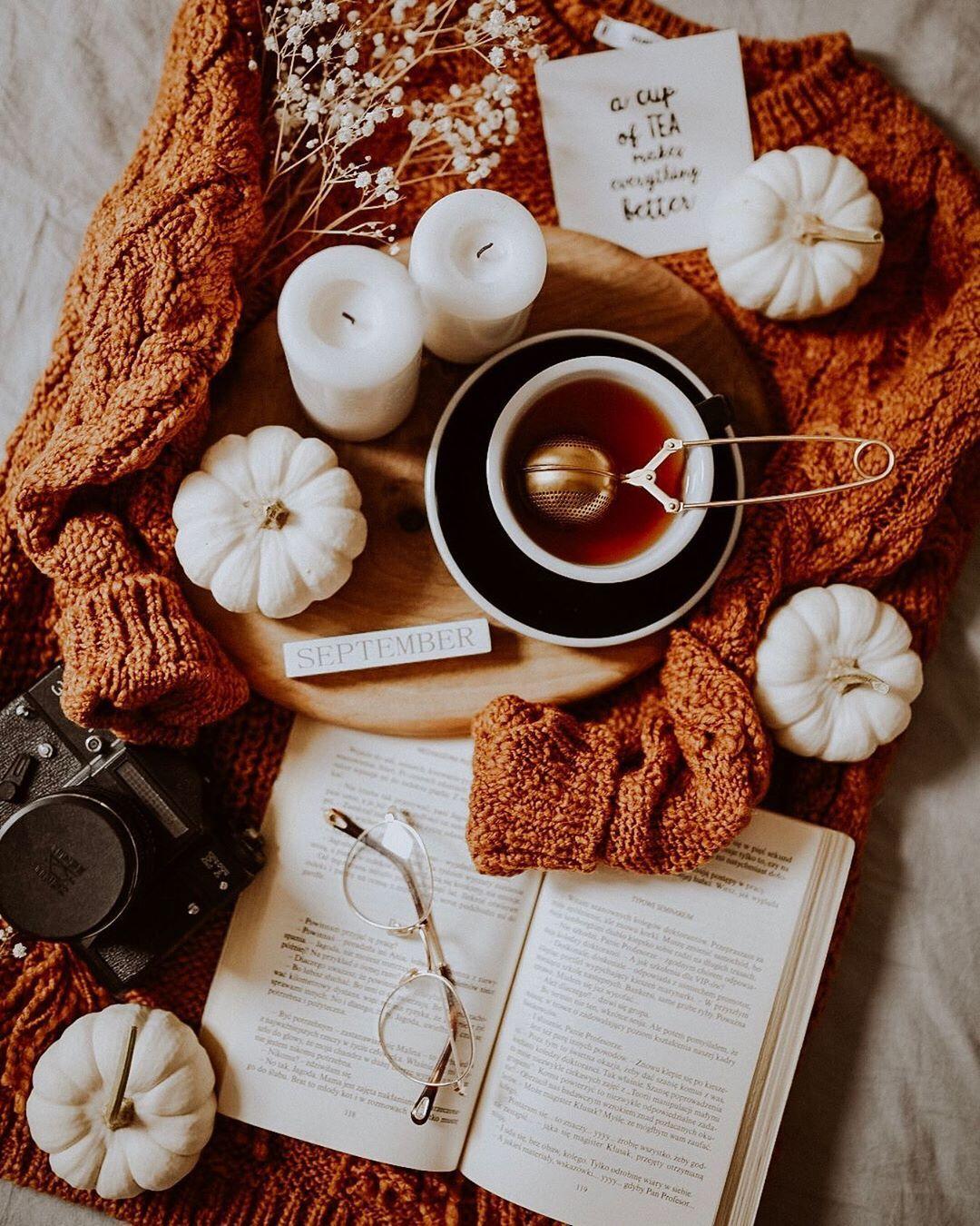 """Paulina Garlacz on Instagram: """"Hello September. � • Wrzesień wita nas ostatnim podobno upalnym dniem, a ja i moje stadko swetrów czekamy na ochłodzenie. Za czasów…"""""""