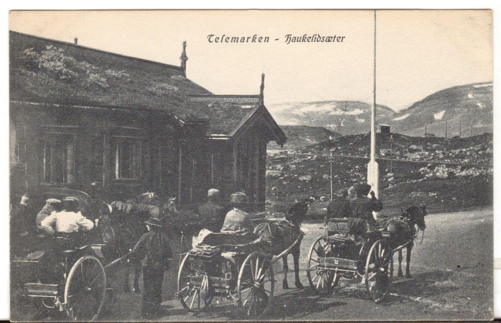 Undated Used Postcard Telemarken Haukenlidsaeter Horses and Carriages Norway