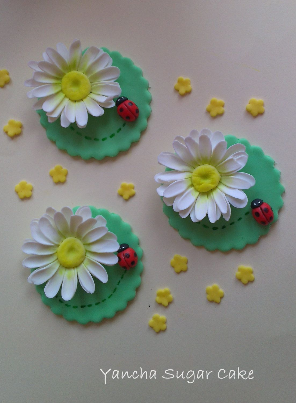 Fondant Edible Cupcake Toppers 12 Pcs Gumpaste Daisies Flowers
