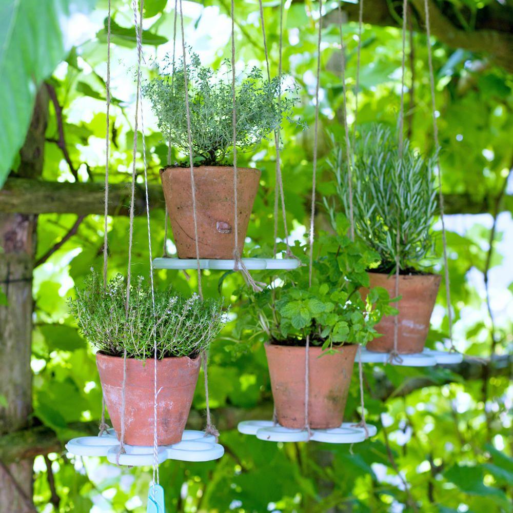 Krautergarten Ideen Fur Balkon Terrasse Garten Krautergarten