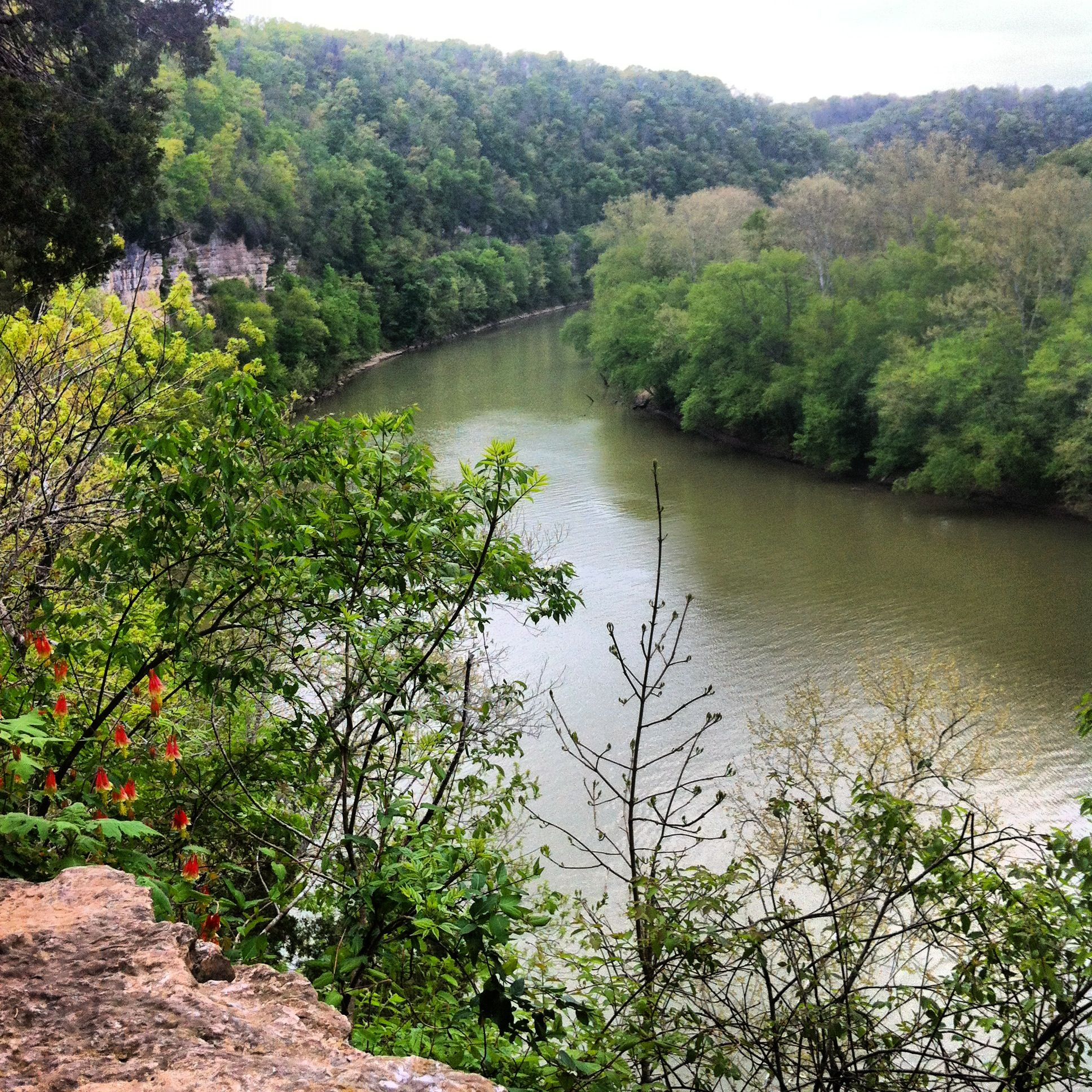 overlook at the kentucky river overlook at