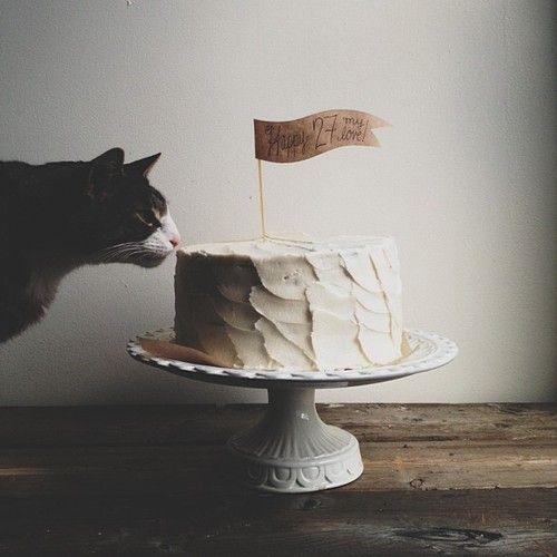 Animals おしゃれまとめの人気アイデア Pinterest Ashley Carlyle Amaral Birthdayカード 猫 バースデーケーキ