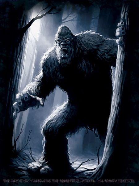 Bigfoot exists I've seen it's sister  #winning