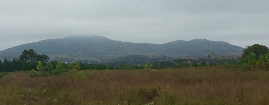 Given our Election Day weather, one could mistake Big Kennesaw Mountain for the Battle Above the Clouds.