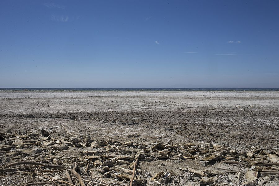 Once A Resort To Stars Such As Frank Sinatra And Groucho Marx The Salton Sea Now Shrivels California Gasps For Water