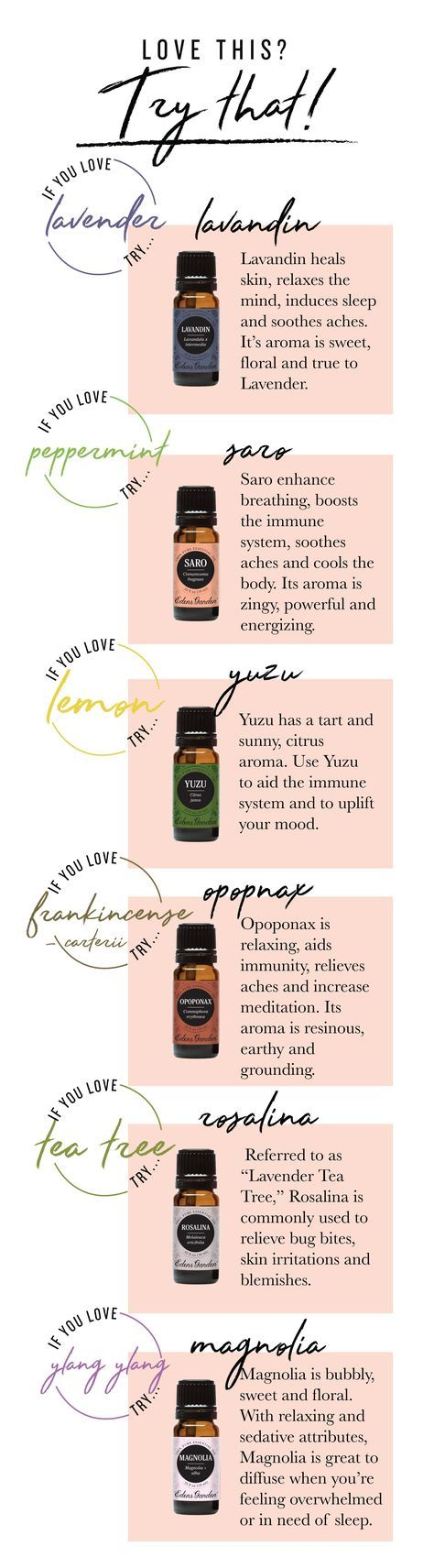 Love This? Try That! Our Guide To Essential Oils