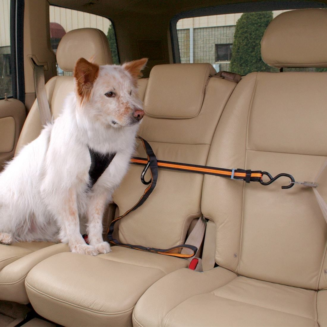 Auto Zip Line Dog Seat Belt Dog Car Dogs