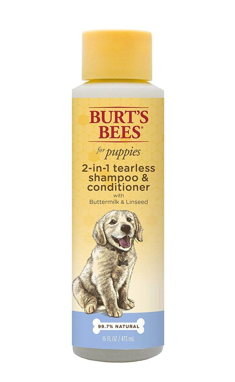 Can You Use Dove Body Wash On Dogs : Puppy, Tips!, Start, Bathing, Should, Shampoo,, Conditioner,, Burts, Shampoo