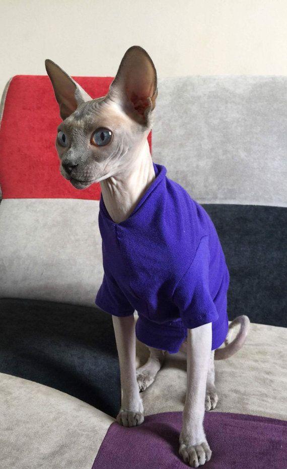 Cat Clothes Charming T Shirt Soft And Comfortable Sphynx Cat Clothes Dog Clothes Pet Cat Sweater In Short Or Long Sl Sphynx Cat Clothes Pet Sweater Cat Clothes