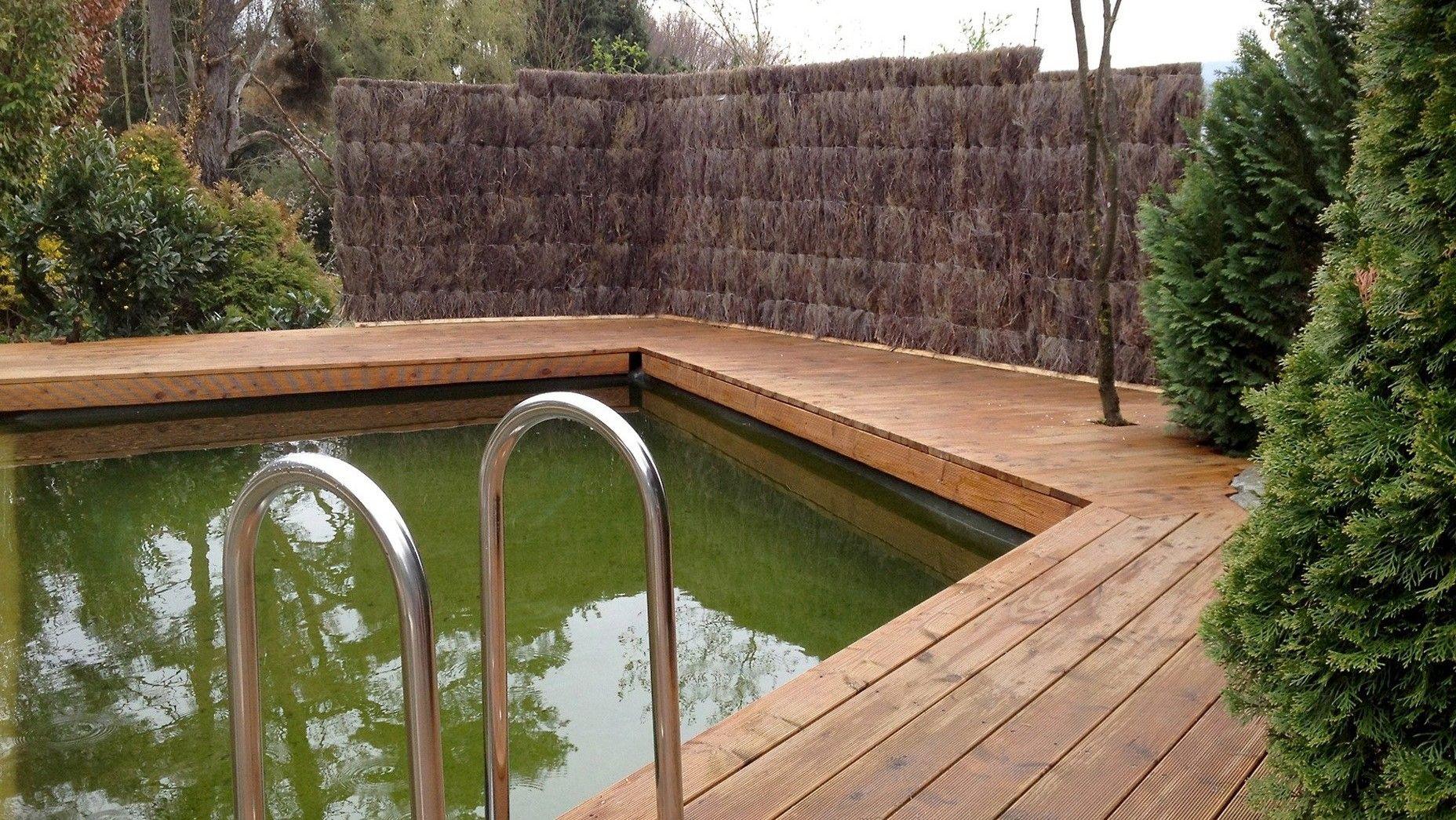 Naturlicher Sichtschutz Aus Heidekraut Fur Den Poolbereich 100