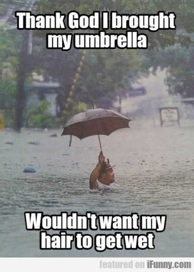 Umbrella Funny Picture Quotes Really Funny Pictures Really Funny