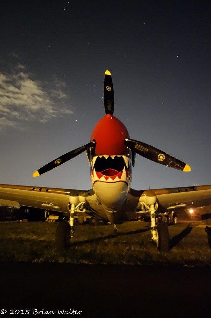 P-40 by Brian Walter